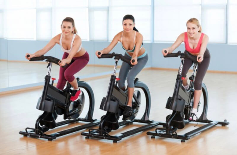 Sunny Health and Fitness Spin bike review