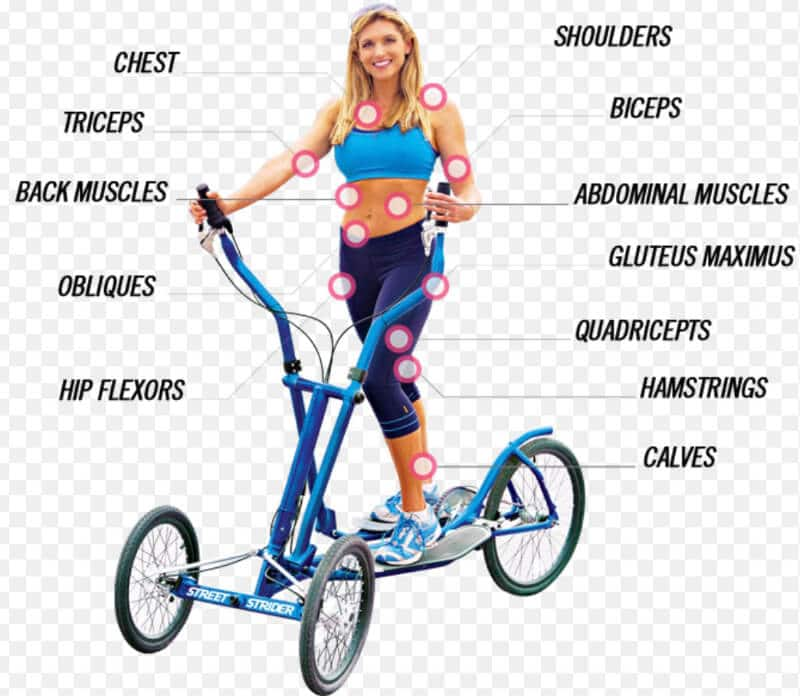 What part of the body does the elliptical target