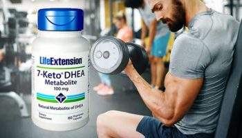Best 7-Keto Supplements – Top 10 Brands Reviewed for 2019