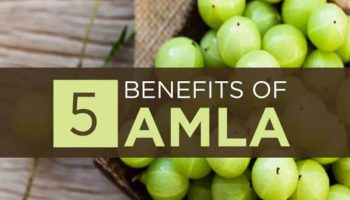 Best Amla Supplements – Top 10 Brands Reviewed for 2019