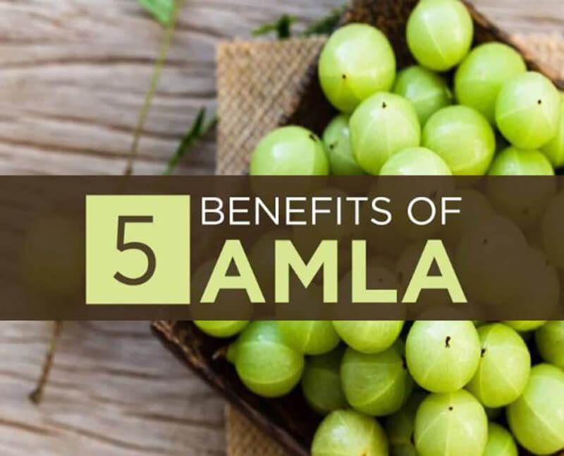 Best Amla Supplements – Top 10 Brands Reviewed for 2019