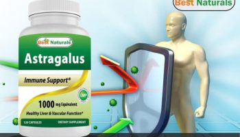 Best Astragalus Supplements – Top 10 Brands Reviewed for 2019