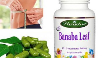 Best Banaba Leaf Supplements – Top 10 Brands Reviewed for 2019