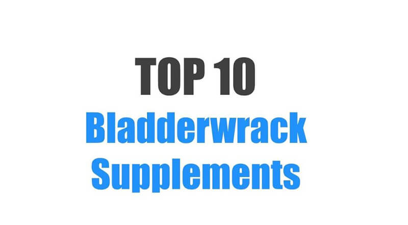 Best Bladderwrack Supplements – Top 10 Brands Reviewed for 2019