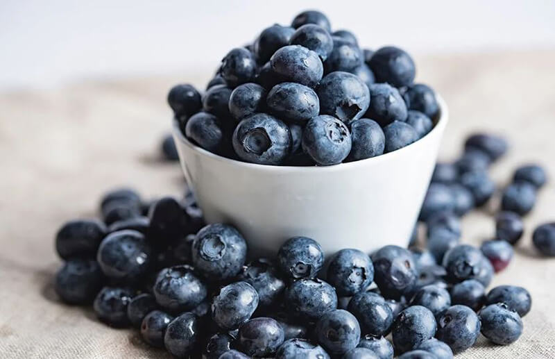 Best Blueberry Supplements – Top 10 Brands Reviewed for 2019