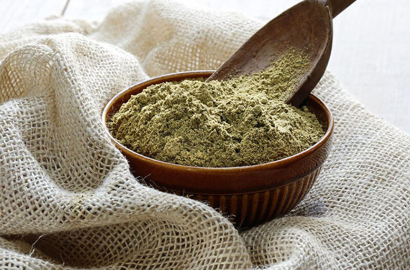 Our Pick of The Best Hemp Protein Powders