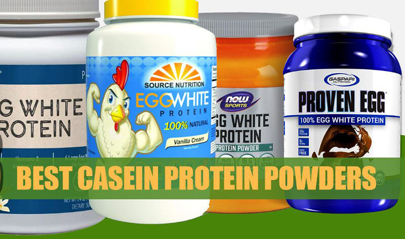 The 7 Best Egg White Protein Powder For Your Healthy Diet
