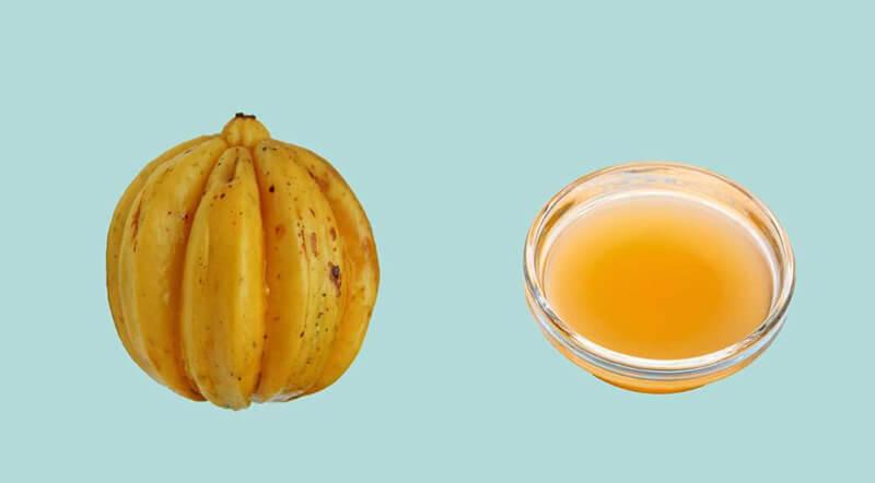Use garcinia cambogia and braggs apple cider vinegar together